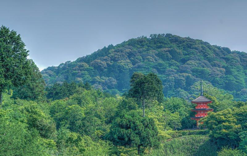 kioto (6)